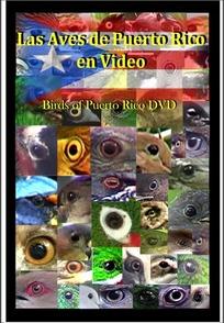 Portada devedé Las Aves de Puerto Rico en Video